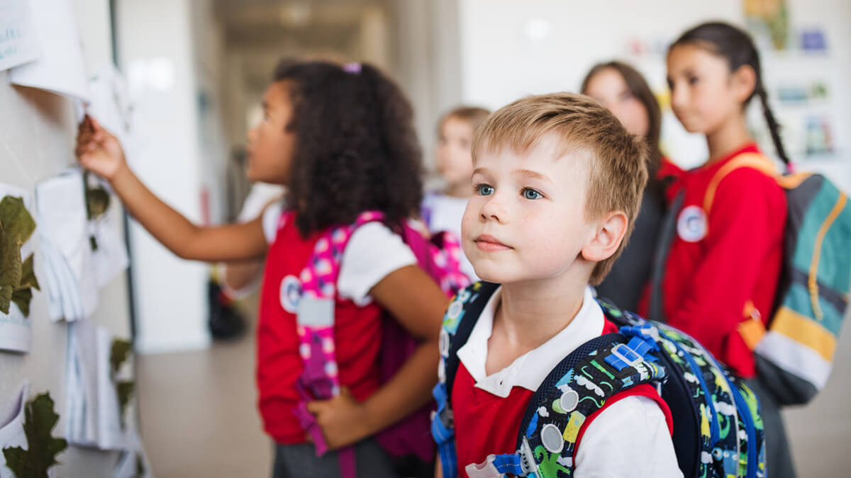 What Courses Do You Take When Earning a BS in Elementary Education?