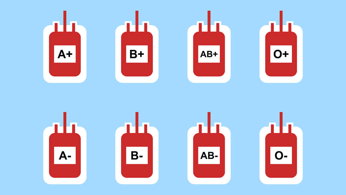What Your Blood Type Says About You: A Fun, Educational Look at Your Health and Personality