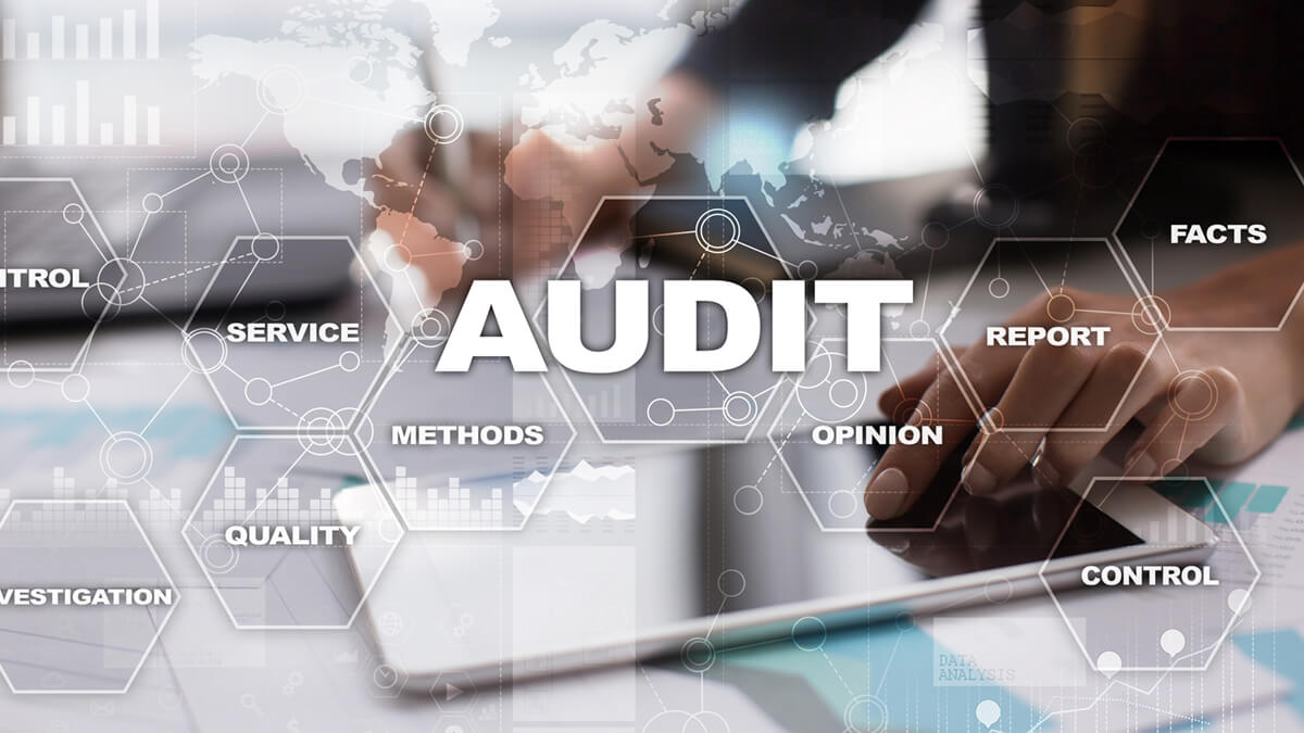 Top Areas of Auditor Specialization